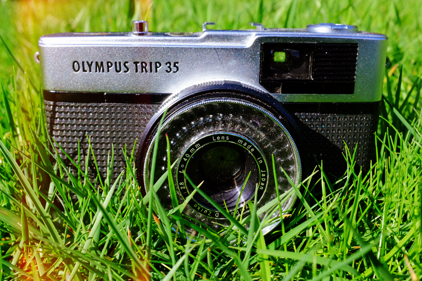 Olympus Trip 35 sitting in a nice nest of grass. :-)
