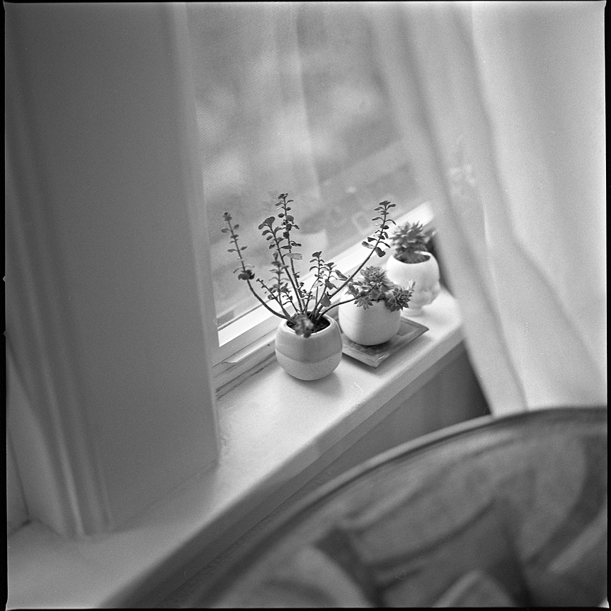 Hasselblad 500c/m with Ilford HP5 film.