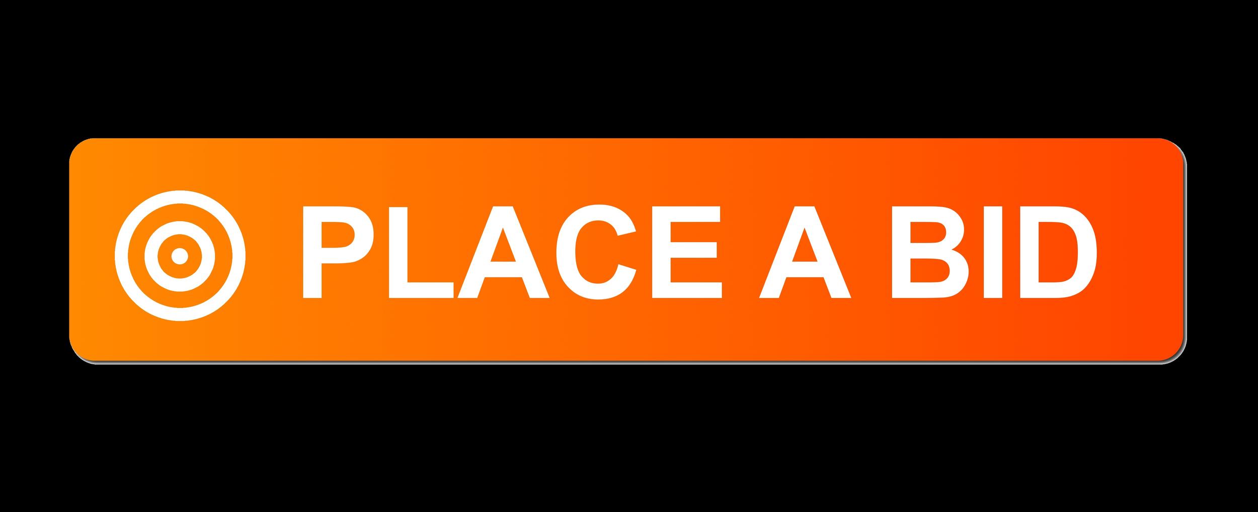 Place A Bid - Our Live Auction