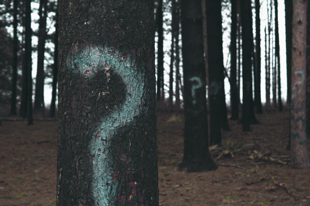 Questions & Answers - Frågor & Svar