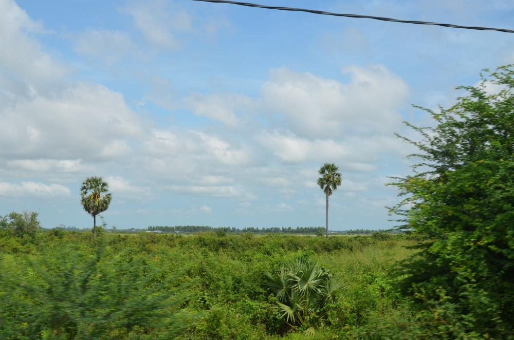 View from our coconut pit stop on the way back from Tonle Sap