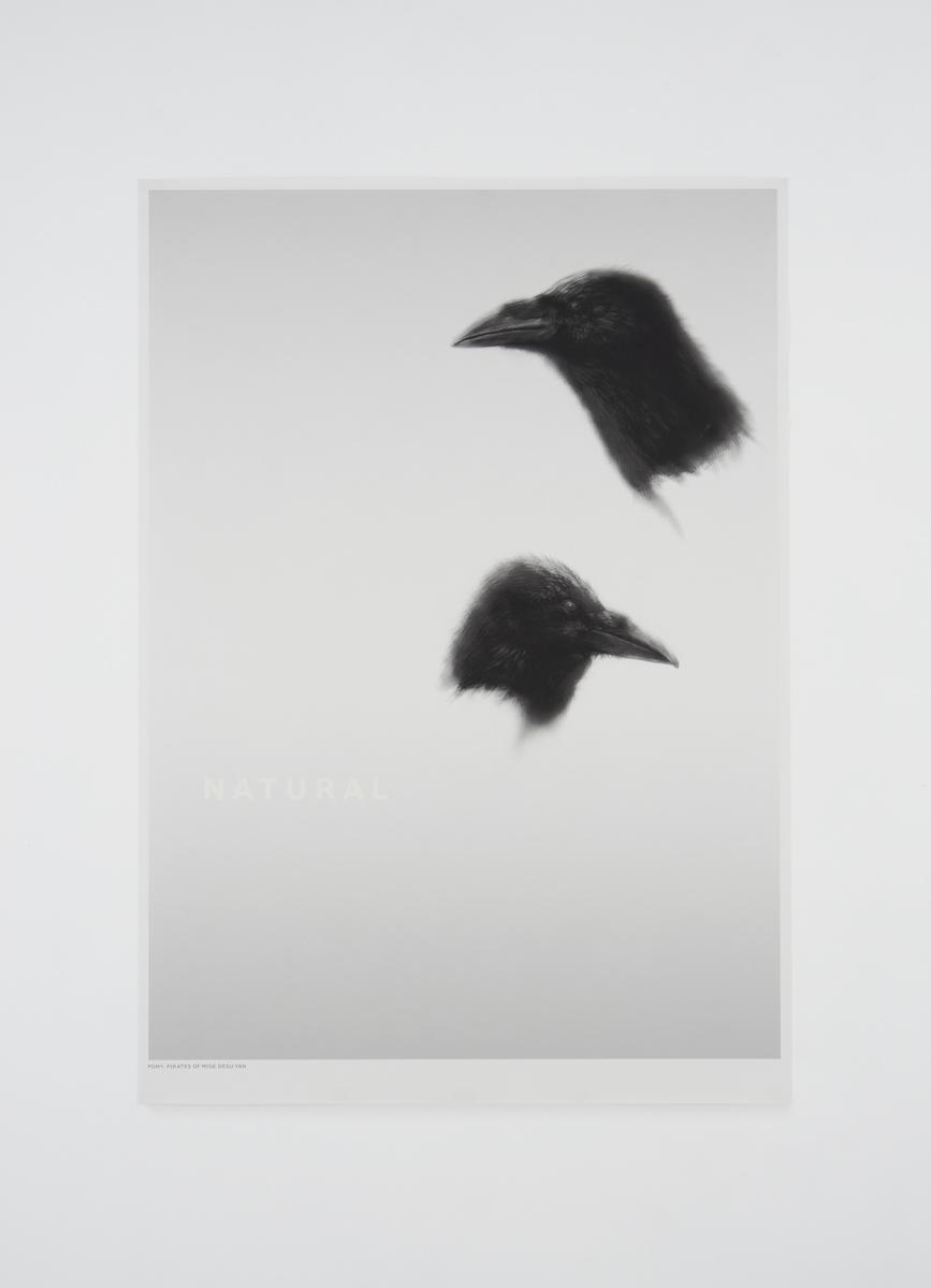 Natural-1.jpg