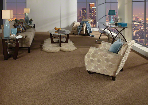 Shaw Carpet 3.jpg