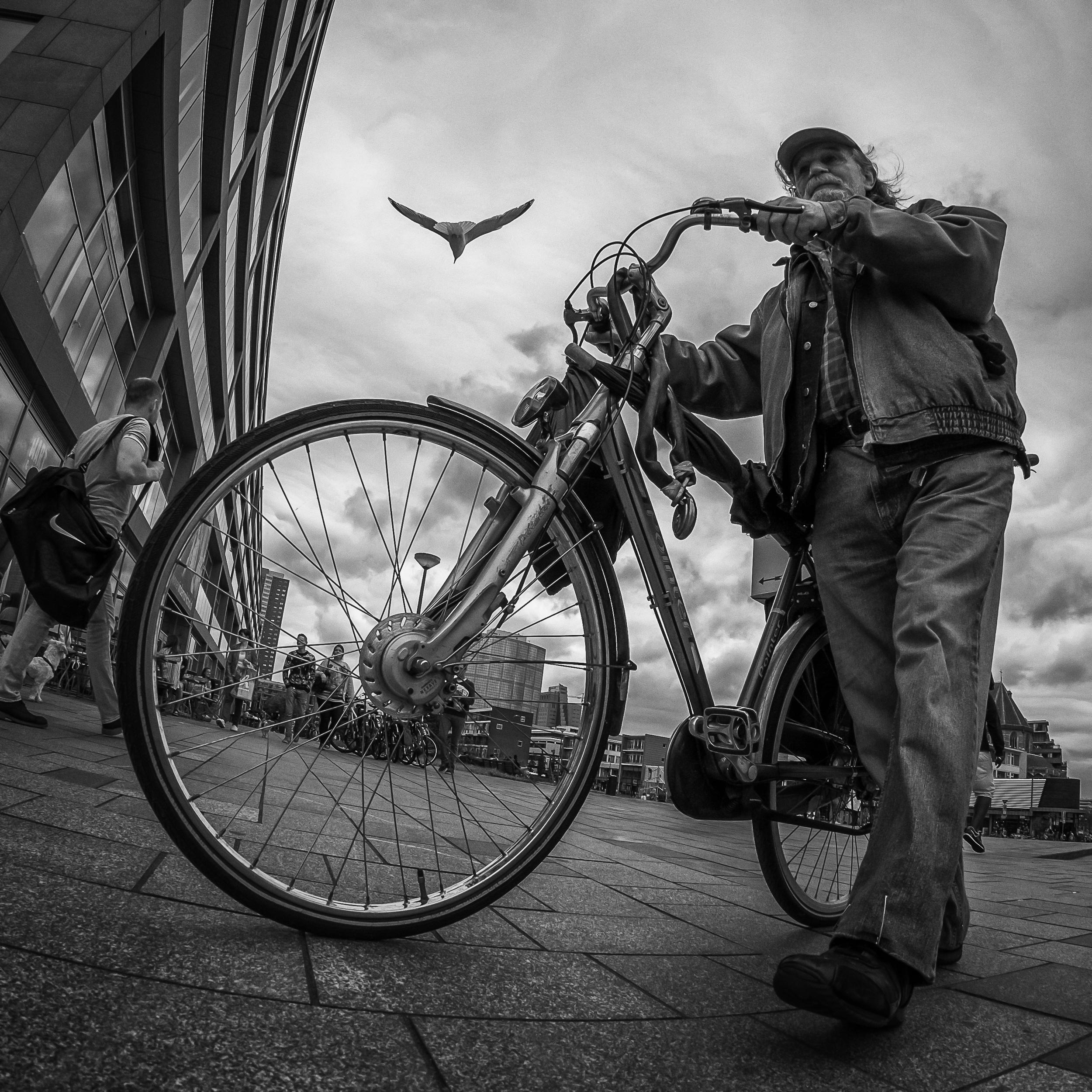 Rotterdam Street Photo-247.jpg