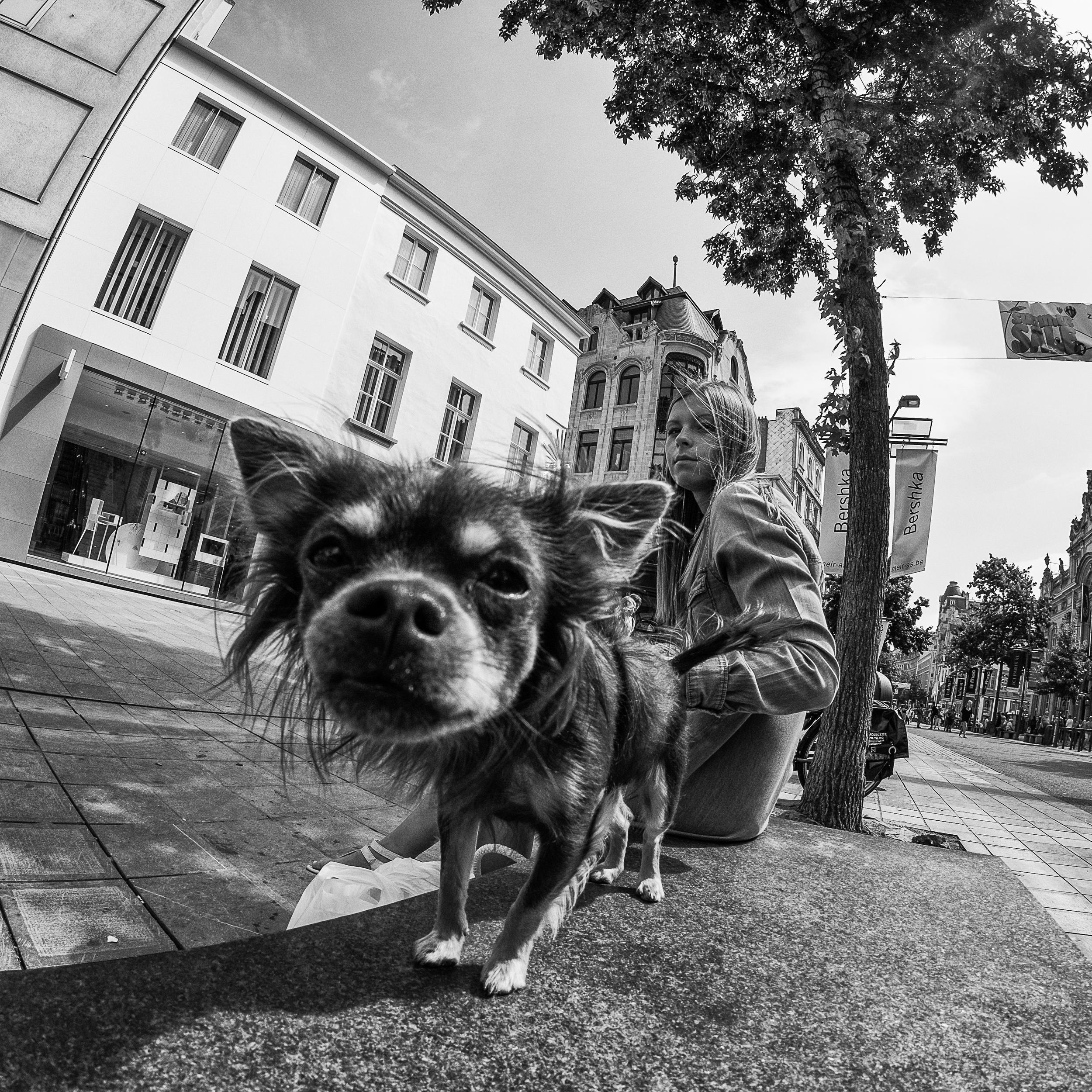 Antwerp-Berchem Street Photo-77.jpg