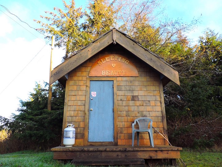 Cabin - mini.jpg