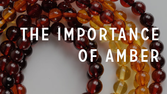 The Importance of Amber