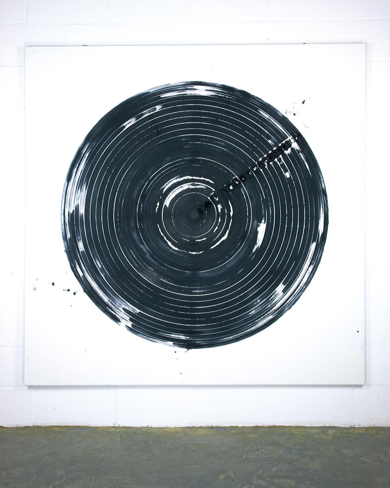 Chaos, Cosmos and Circulation 01-03.jpg