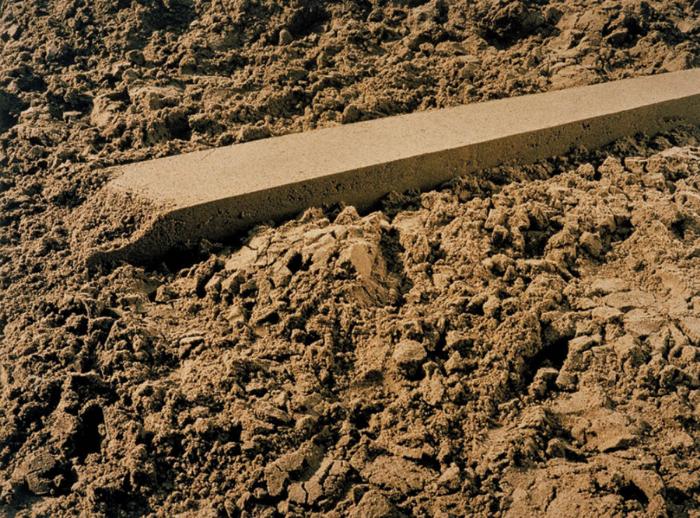 Image: Liset Castillo,Departure Point (detail), c-print on dibond, 2003 /©Liset Castillo