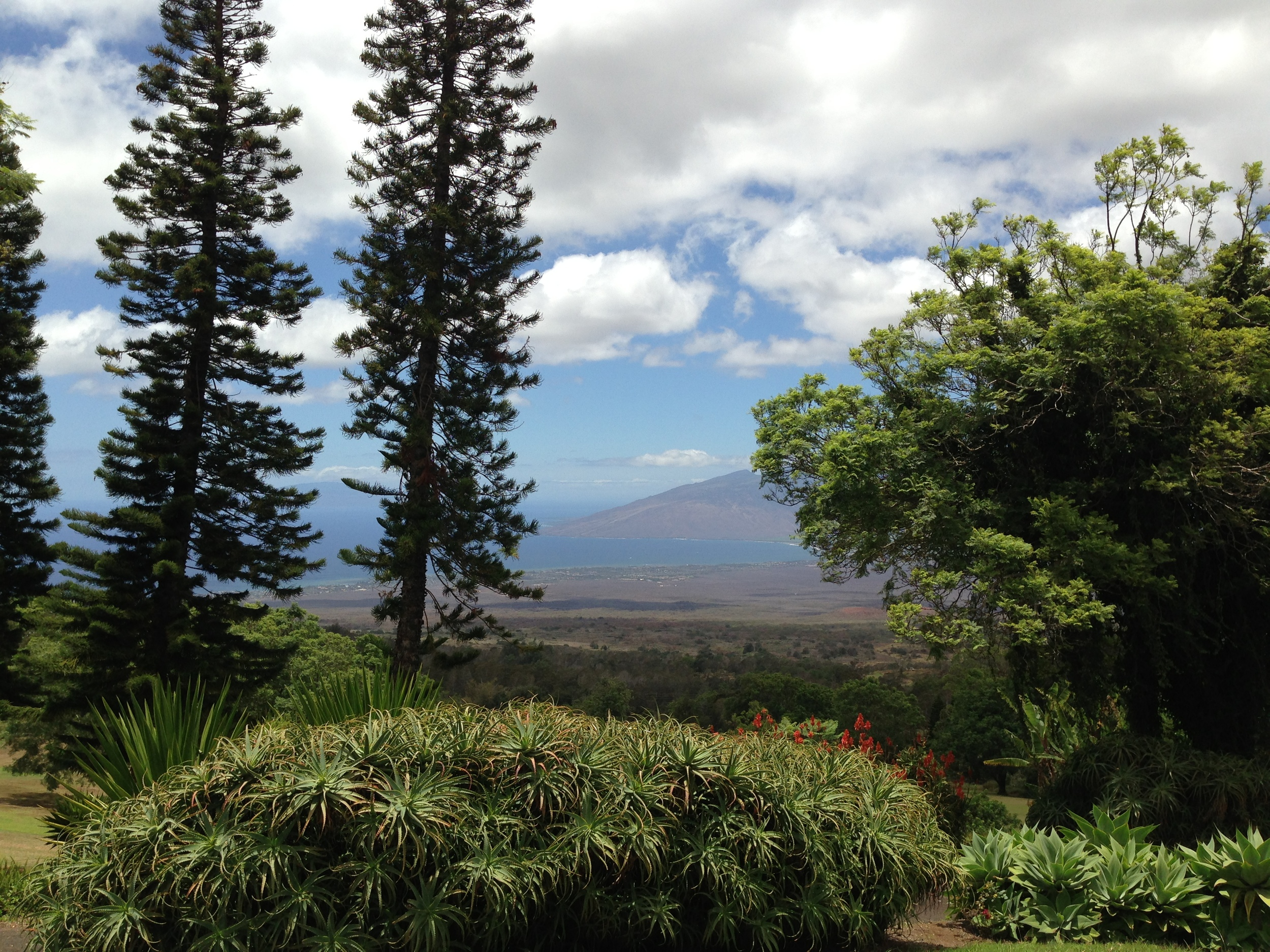 The view from St. John's Church, Kula