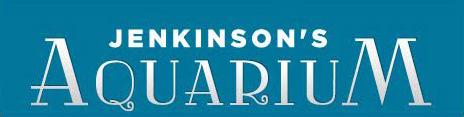 Jenkinson's Aquarium.jpg