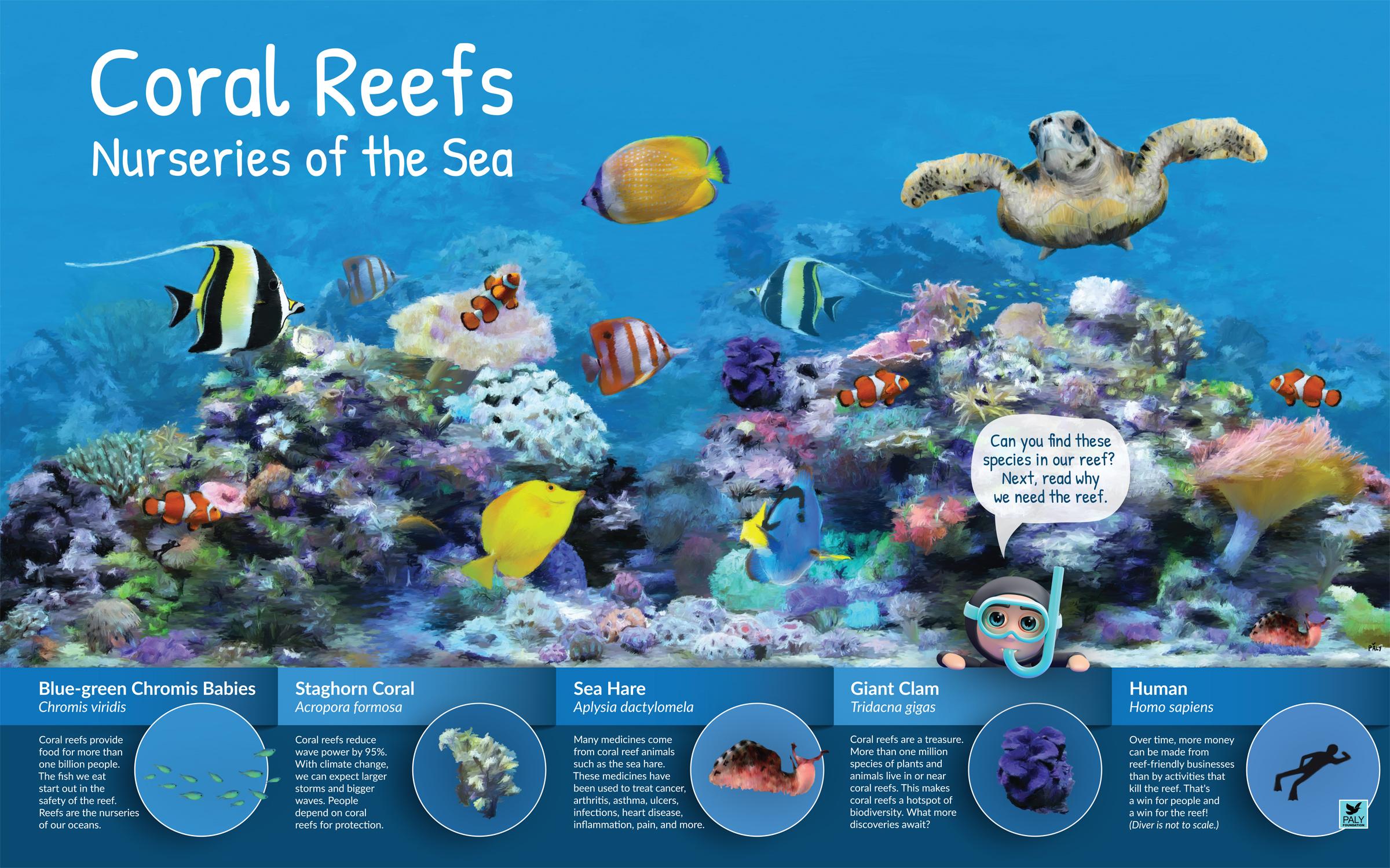 NatureExhibits Coral Reefs: Nurseries of the Sea
