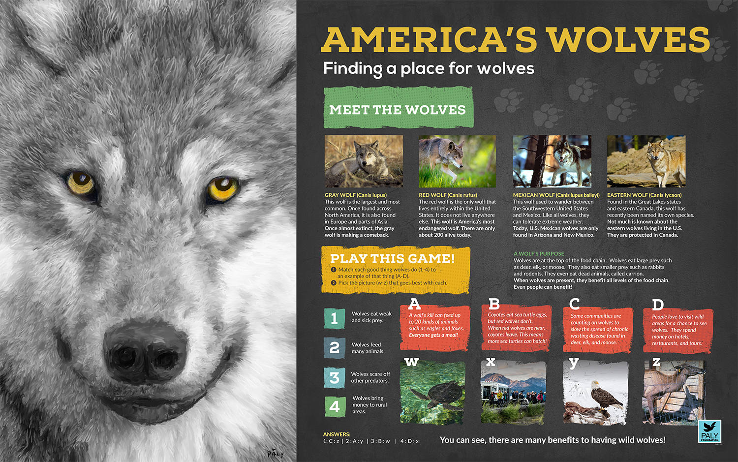 Wolves_Engagement_Panel_Paly_Foundation_Web.jpg