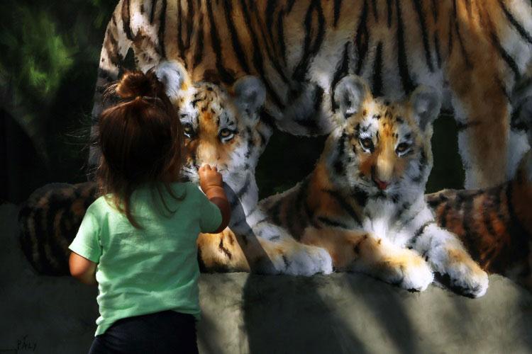 Tiger 05.jpg