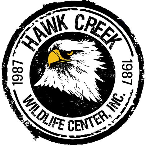 Hawk Creek.jpg