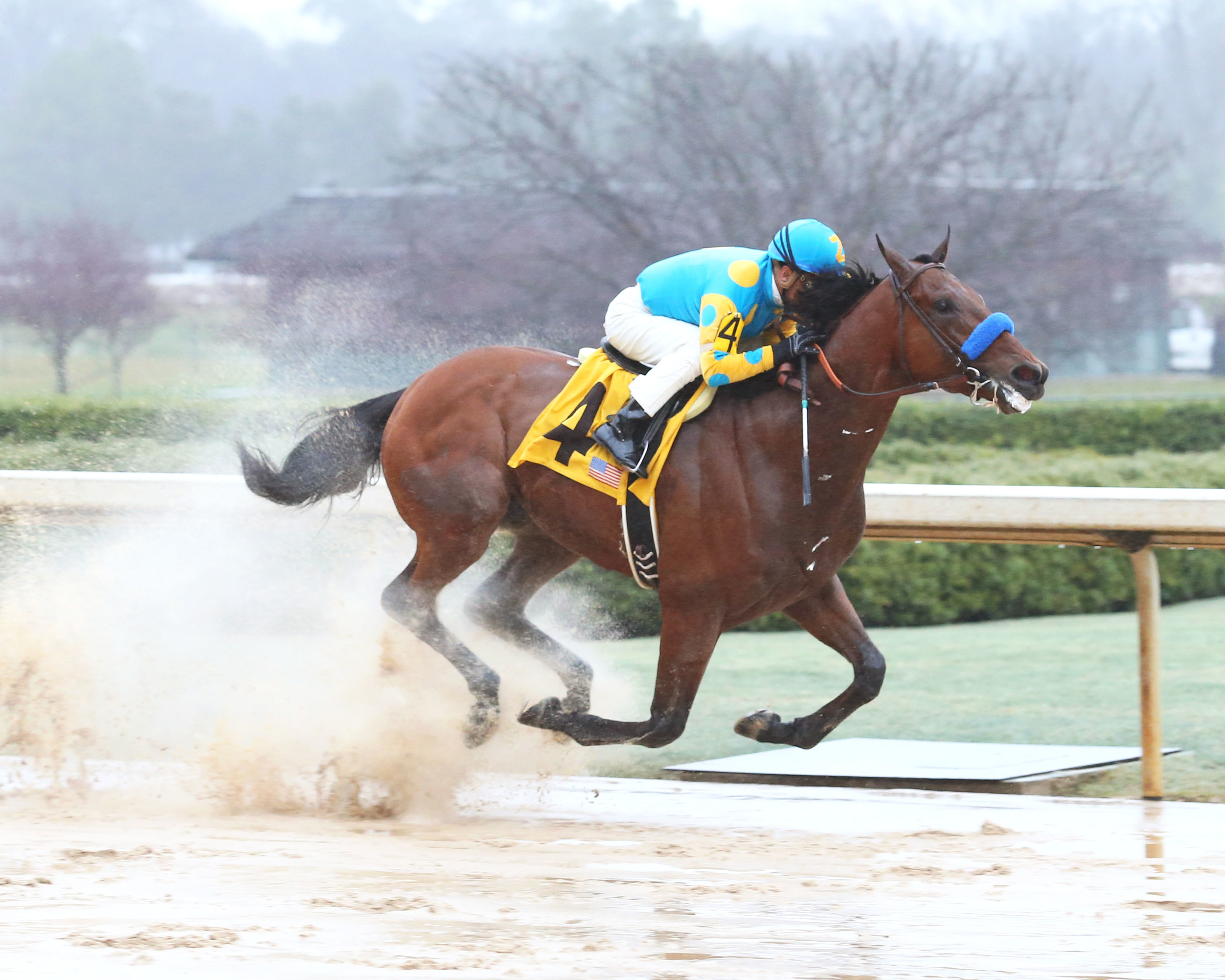 Photo Credit: http://www.kentuckyderby.com/