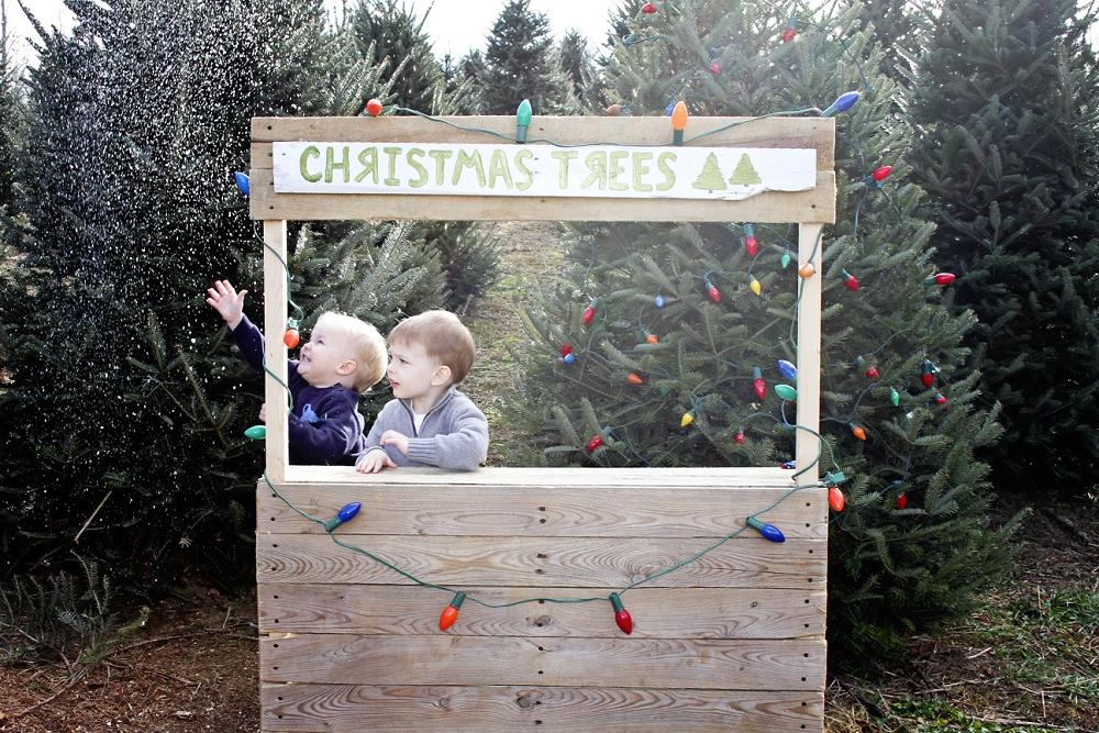 christmas-tree-farm-photos-blacksburg-photographer_0001.jpg