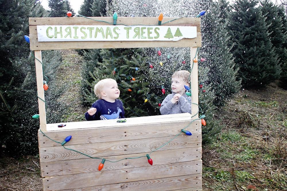 christmas-tree-farm-photos-blacksburg-photographer_0002.jpg