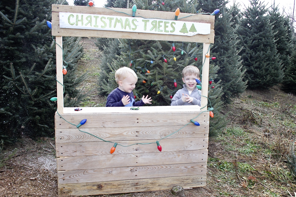 christmas-tree-farm-photos-blacksburg-photographer_0003.jpg