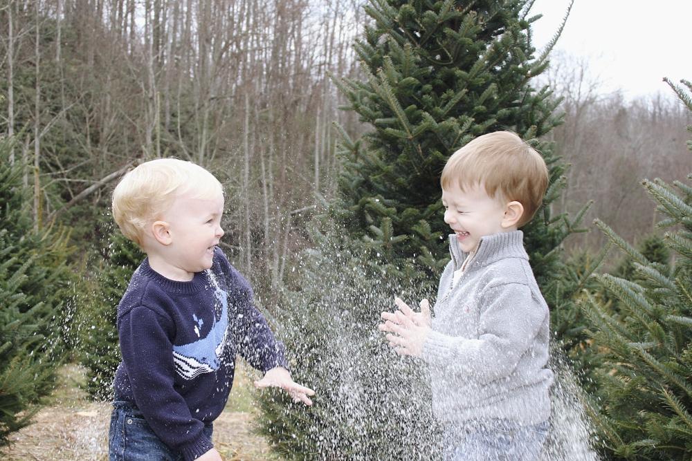 christmas-tree-farm-photos-blacksburg-photographer_0006.jpg