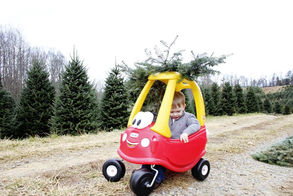 christmas-tree-farm-photos-blacksburg-photographer_0009.jpg