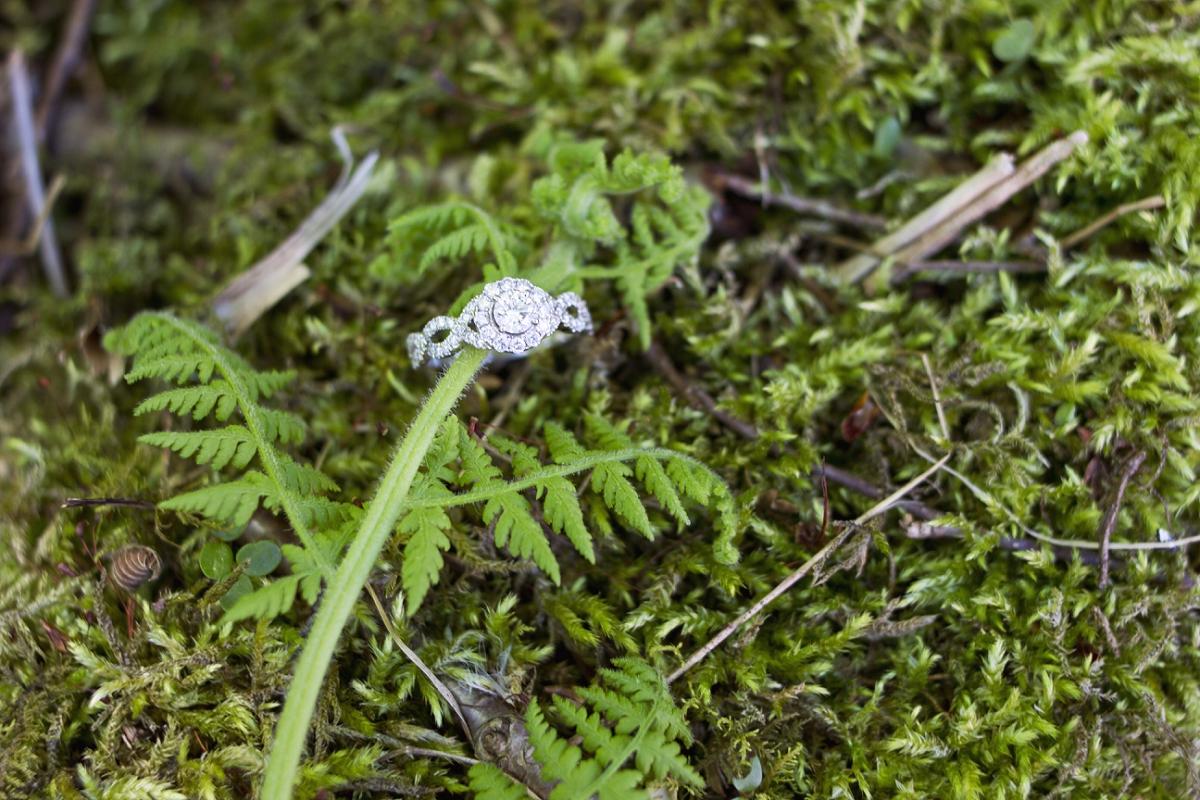 Mountain-Lake-Engagement-Photos-_0011.jpg