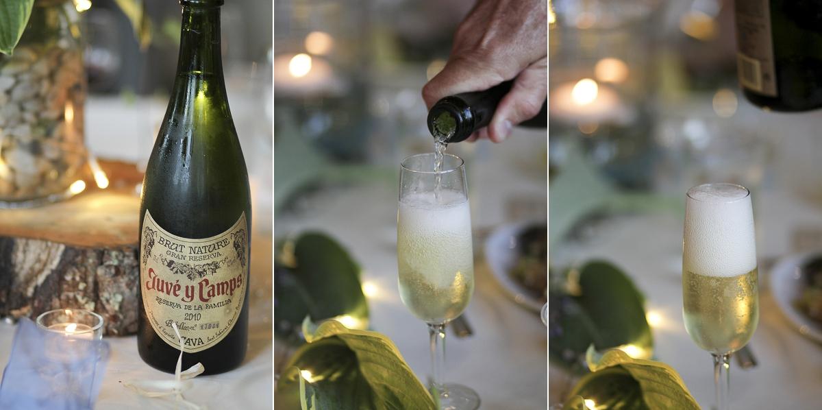 Floyd-EcoVillage-Wedding-Photos-_0011.jpg