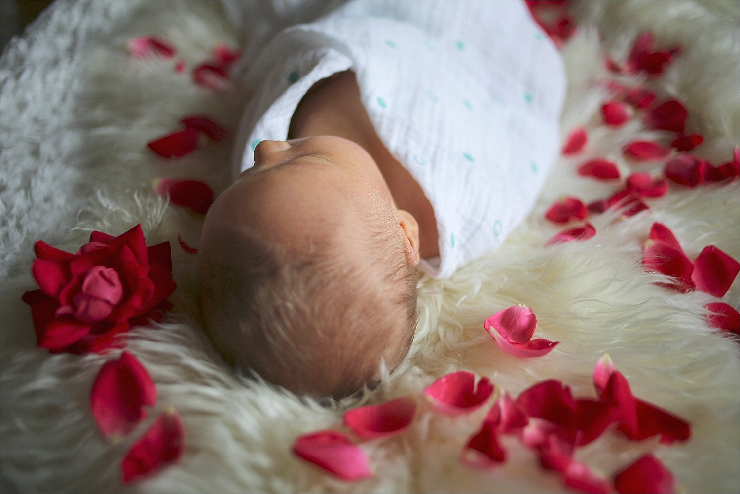 Blacksburg-Newborn-Baby-Photographer_0008.jpg