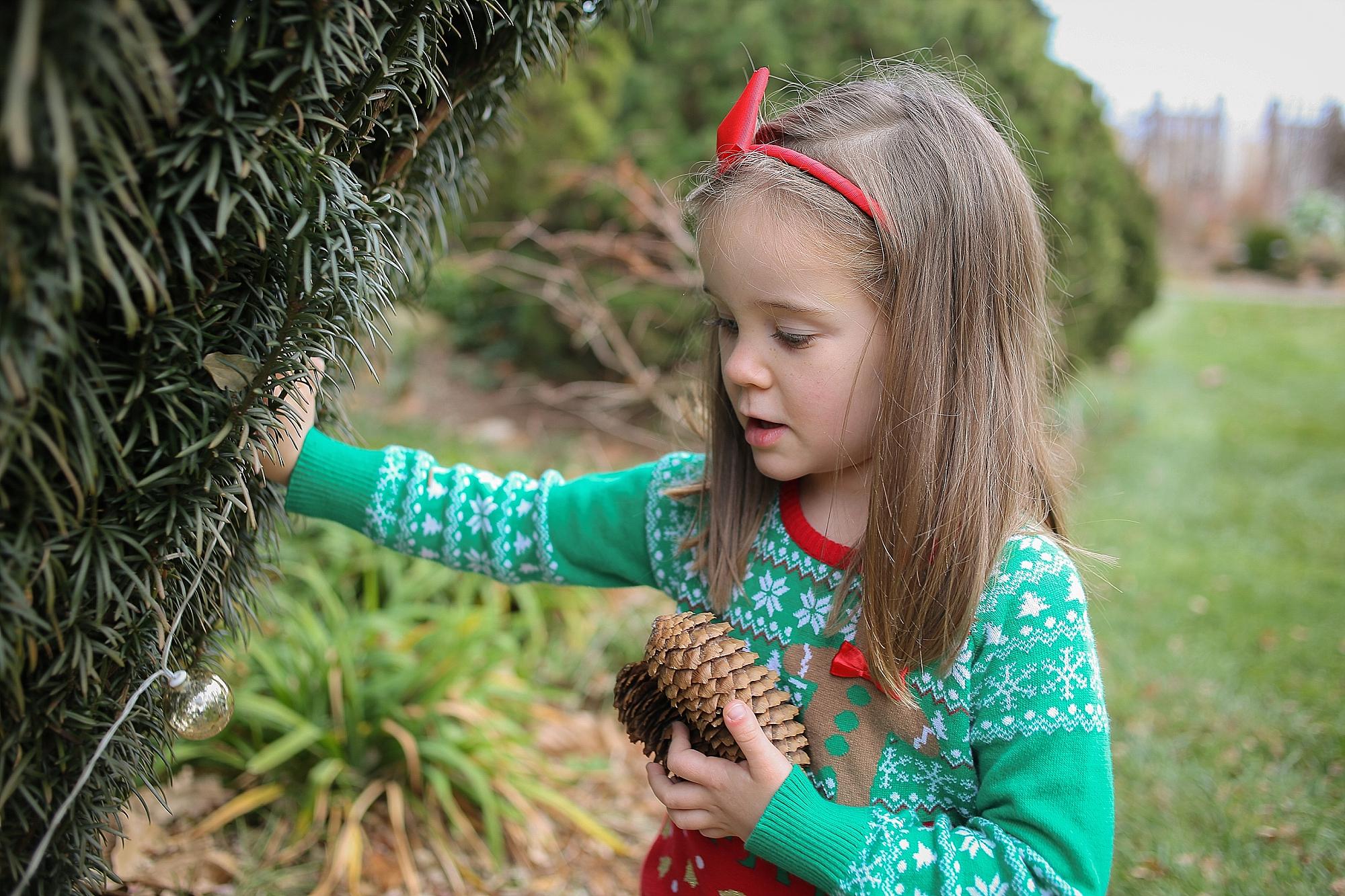 Blacksburg-Christmas-Card-Portrait-Photographer_0011.jpg