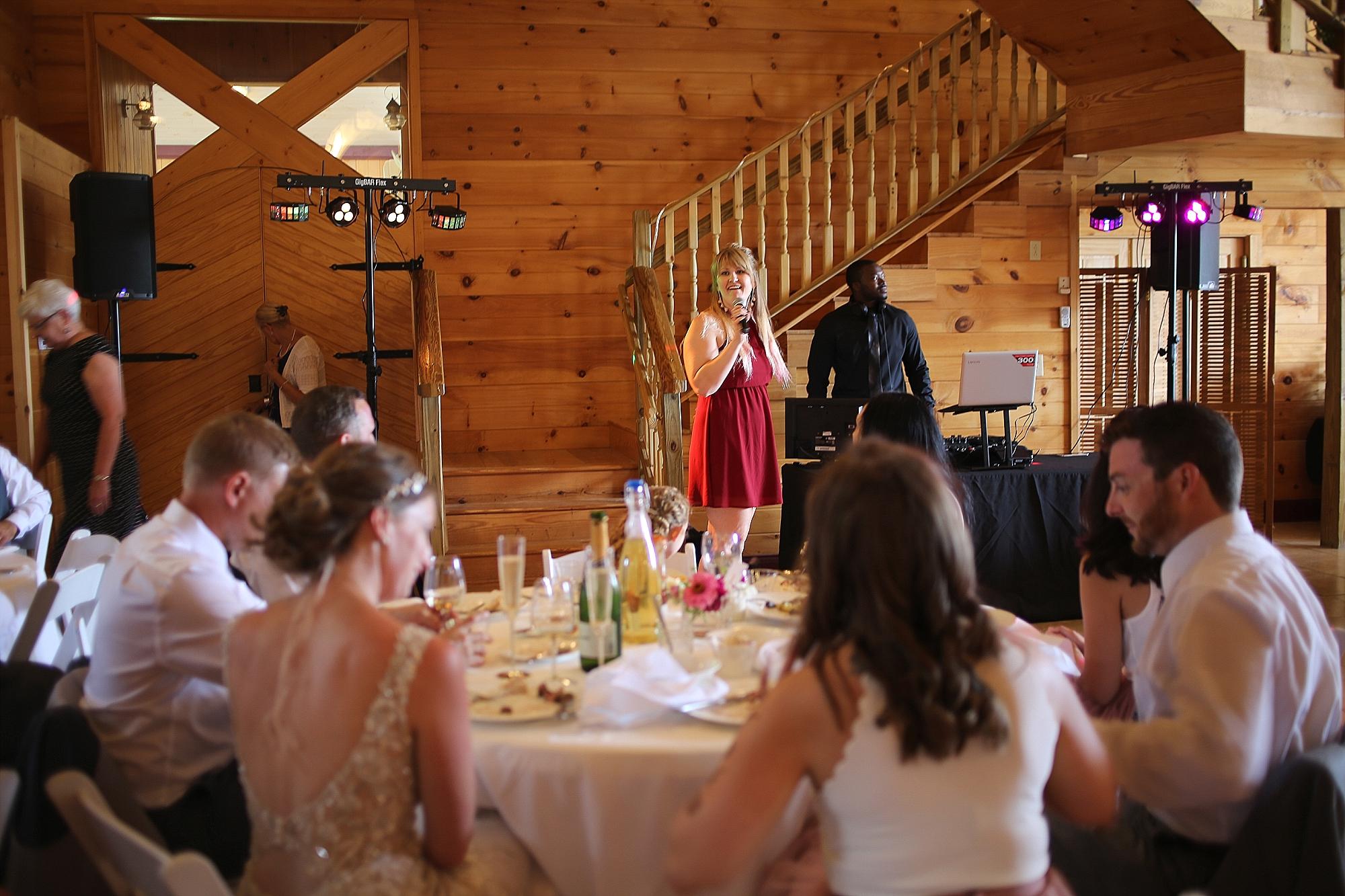 Beliveau-Estate-Winery-Wedding-Photos-Blacksburg-Wedding-Photographers_0063.jpg