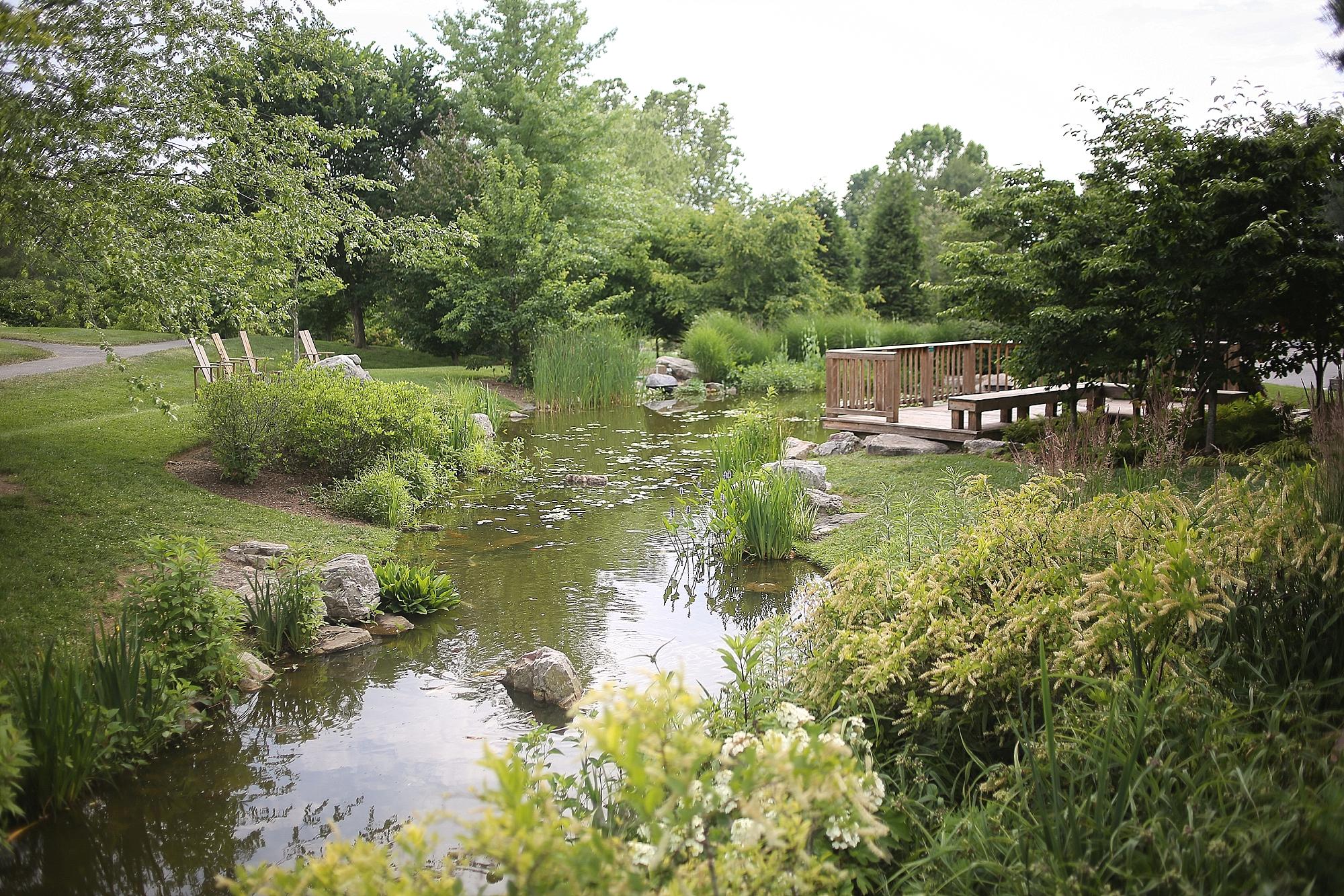 Hahn-Horticulture-Garden-Gala-2018-Virginia-Tech-Blacksburg-Photographers_0043.jpg