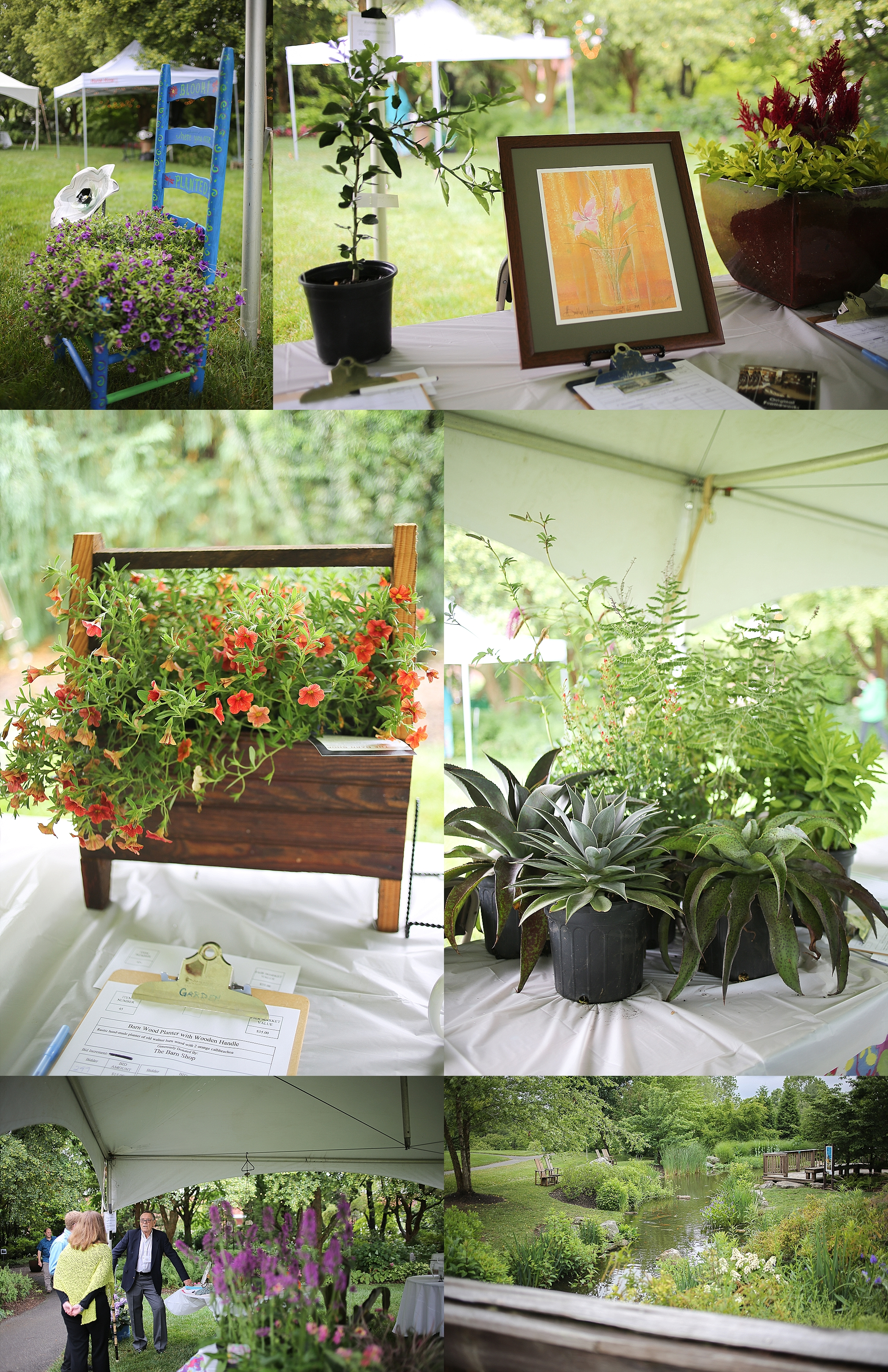 Virginia Tech  Hahn Horticulture Garden Gala 2019