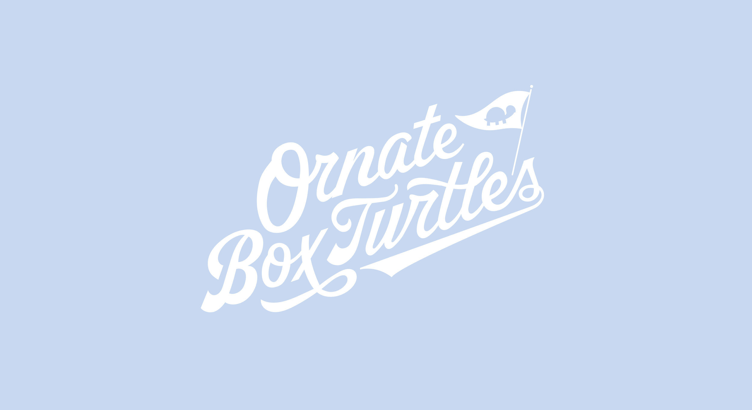 OBT_Turtles_Logo-01.jpg