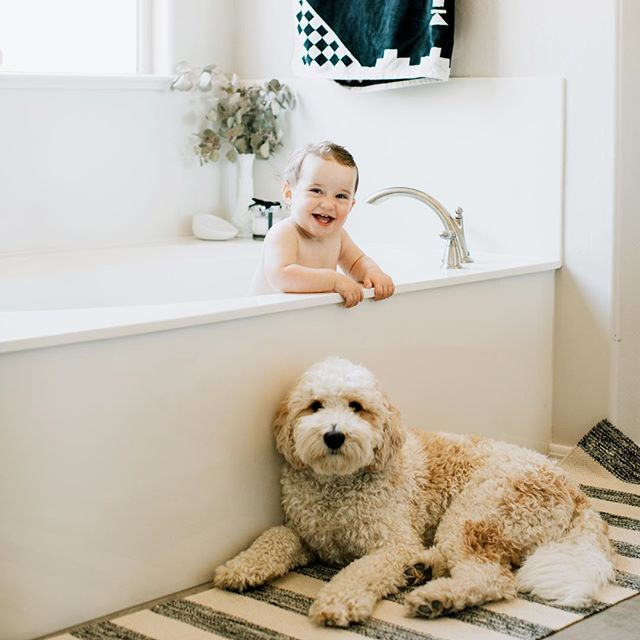 Perfect picture to illustrate 2 of the 3 things I miss the most this month in the trailer... Max and my bath! Then there's also Adam but he didn't want to get naked in the bath for @naomiegagnonphotographe picture so Morgan it is! 🤷🏼‍♀️😂 Back home in 4 days!