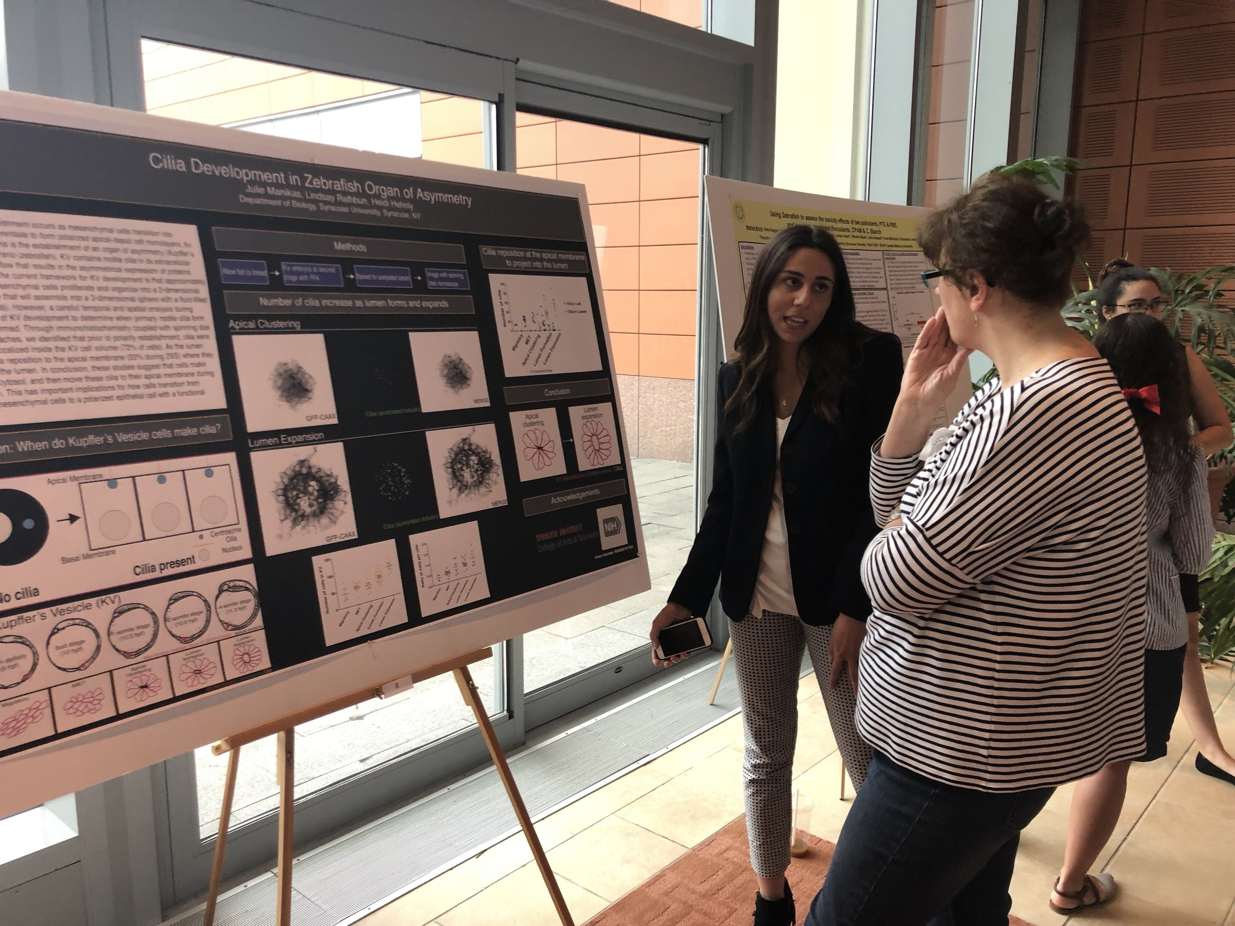 Julie presenting her work on cilia formation in the zebrafish organ of asymmetry. This work was done in collaboration with Lindsay Rathbun (Hehnly Lab).