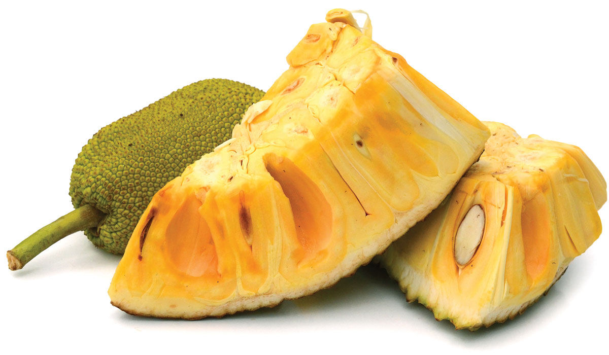 Ripe jackfruit. Costs about $10 for a 1/4 pre-cut chunk..
