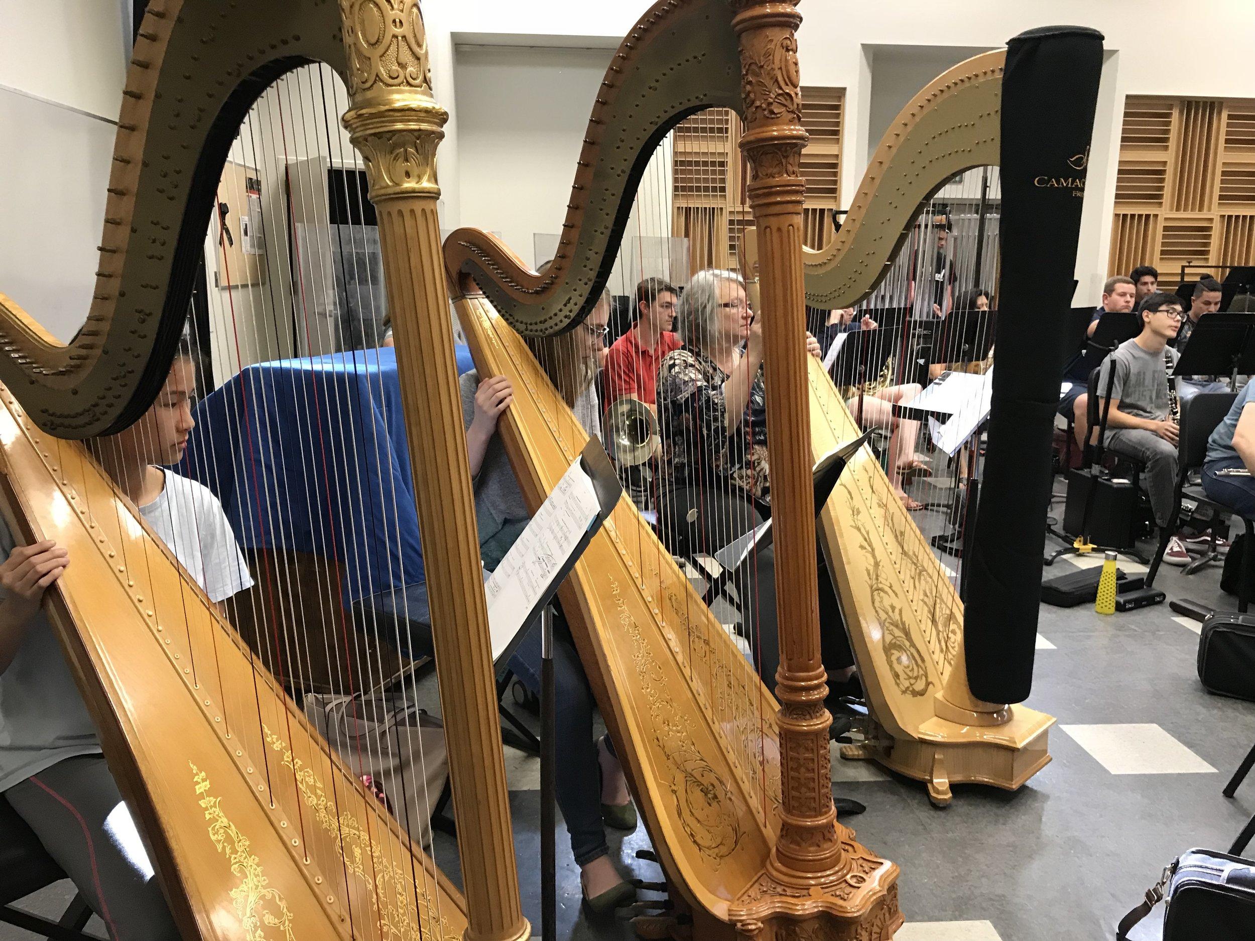FOOSA harps in rehearsal