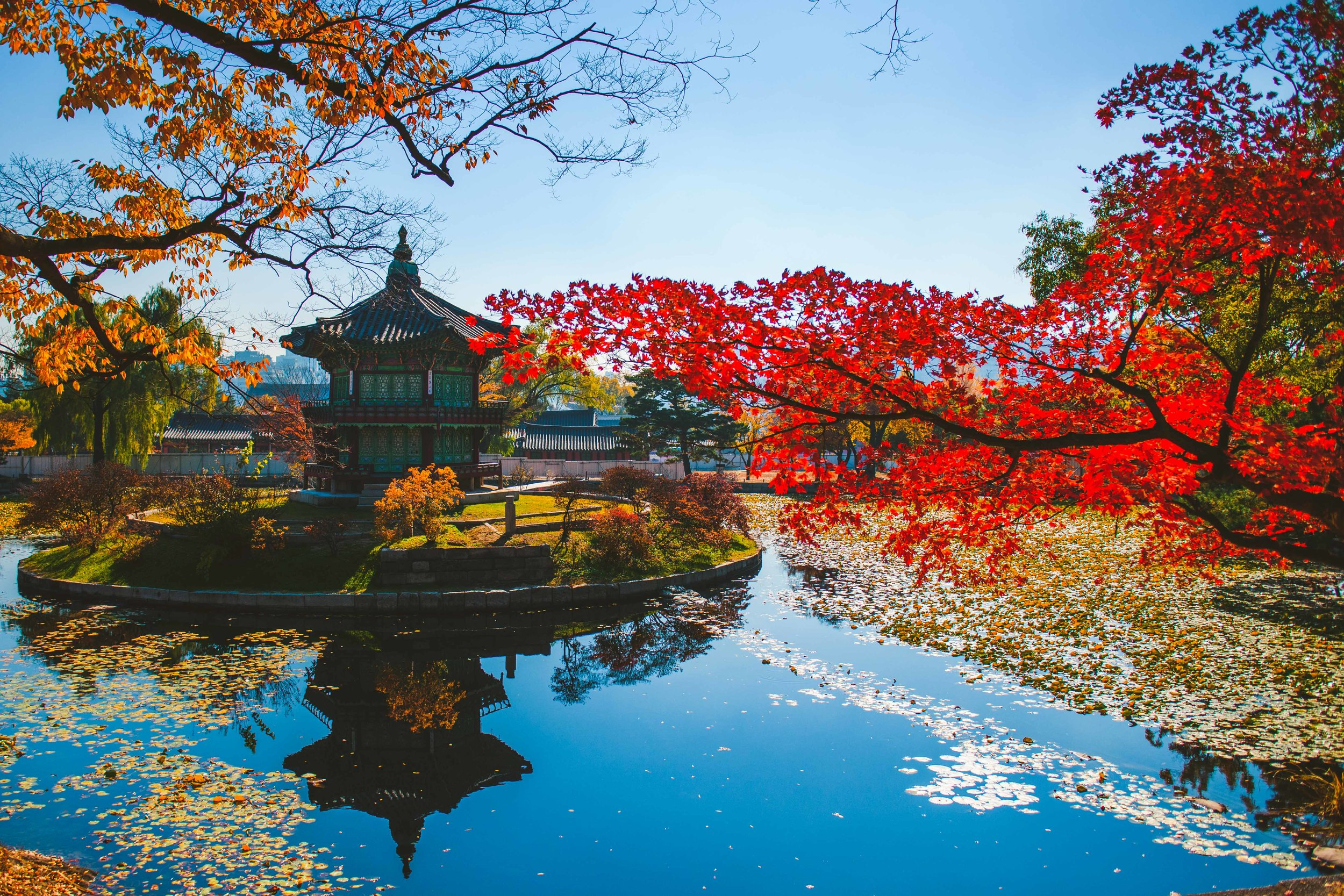 Seoul, South Korea - November 3, 2018