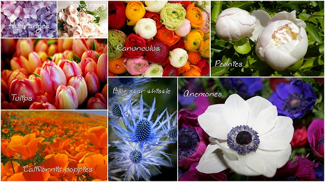 flowerss2.jpg