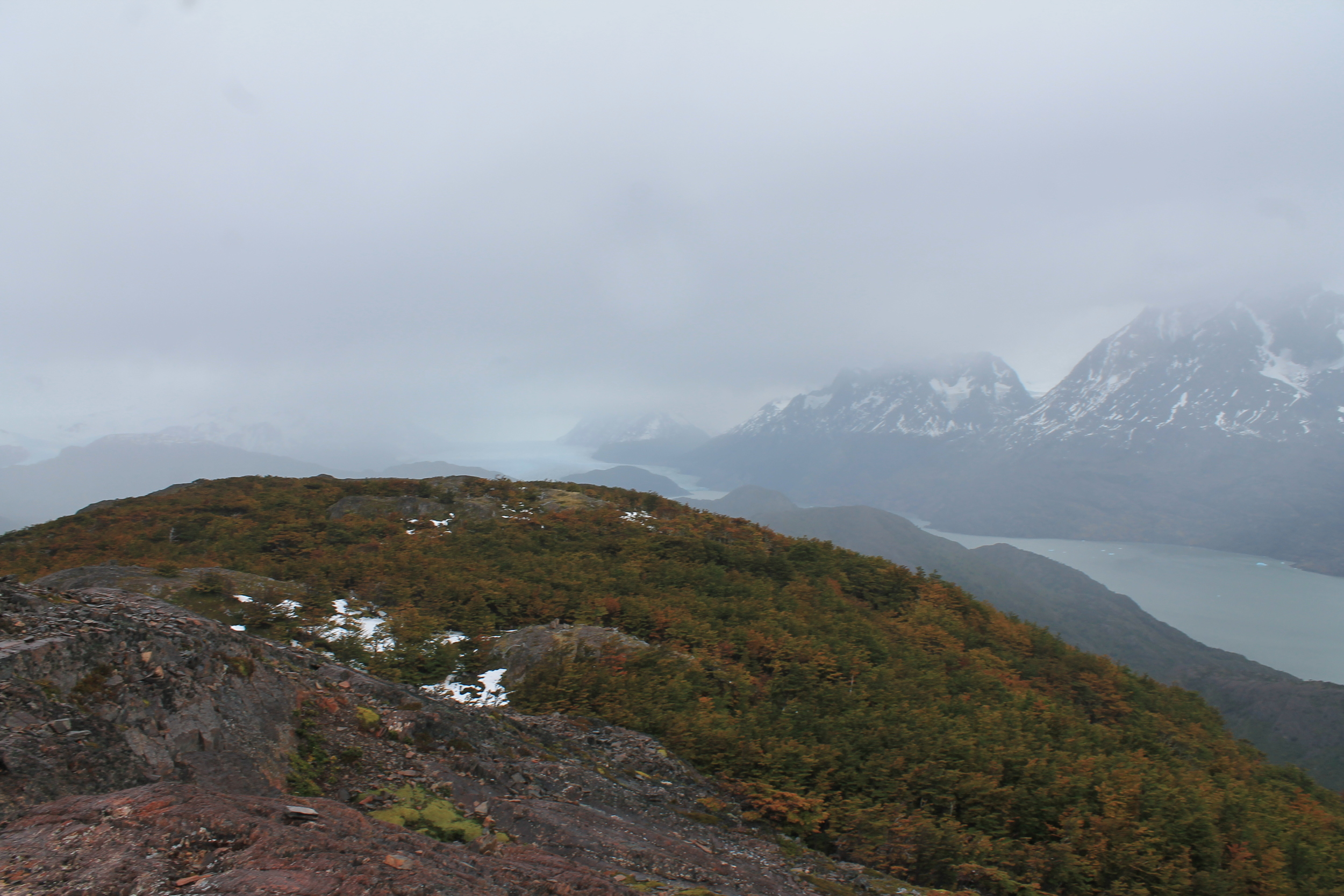 Grey's Glacier from the steepest hike in the park