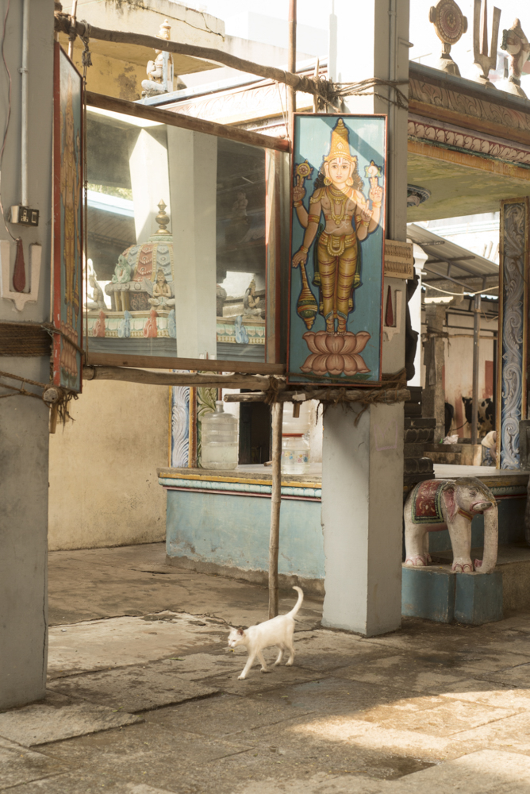 Madras_Priyadarshini4.jpg