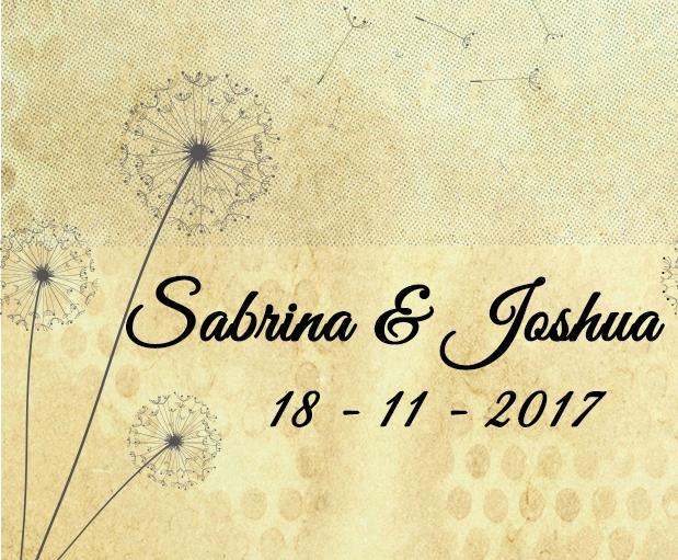 Wedding of Sabrina & Joshua   18th of November 2017