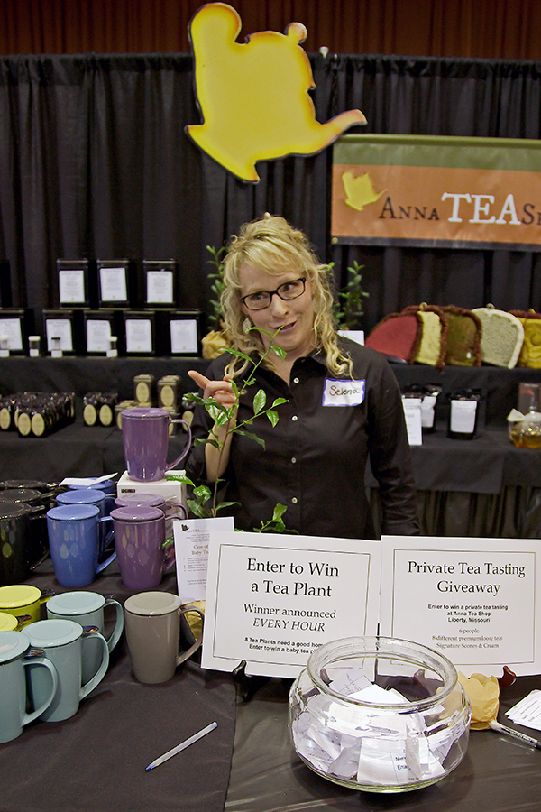 Anna Tea Shop Tea Plant Giveaway - Midwest Tea Festival | Not Starving Yet