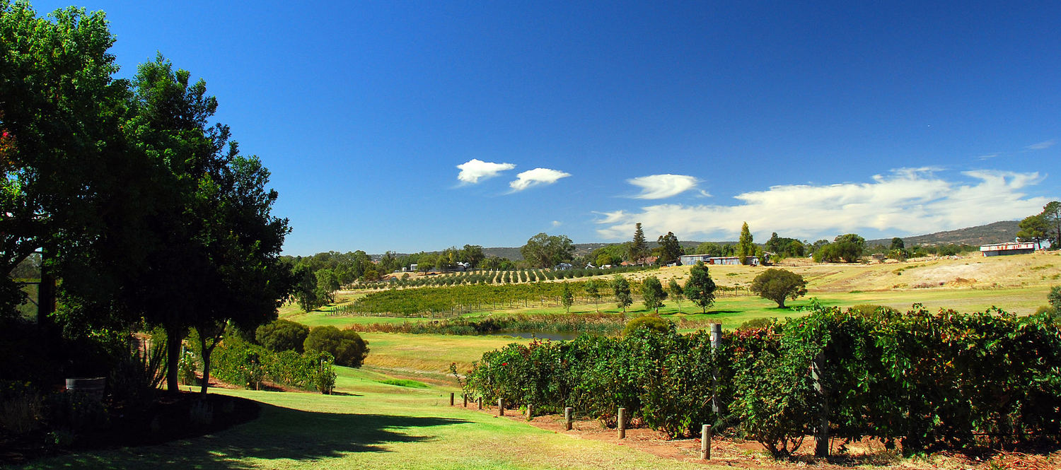 The Swan Valley
