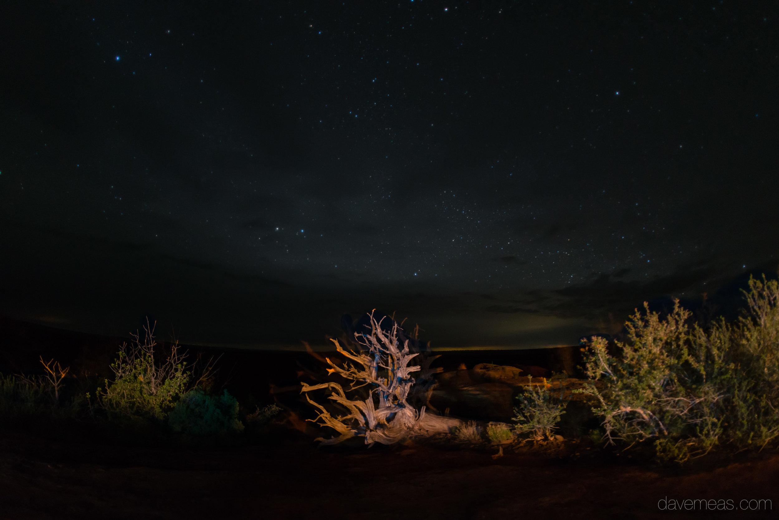 moab (1 of 13).jpg