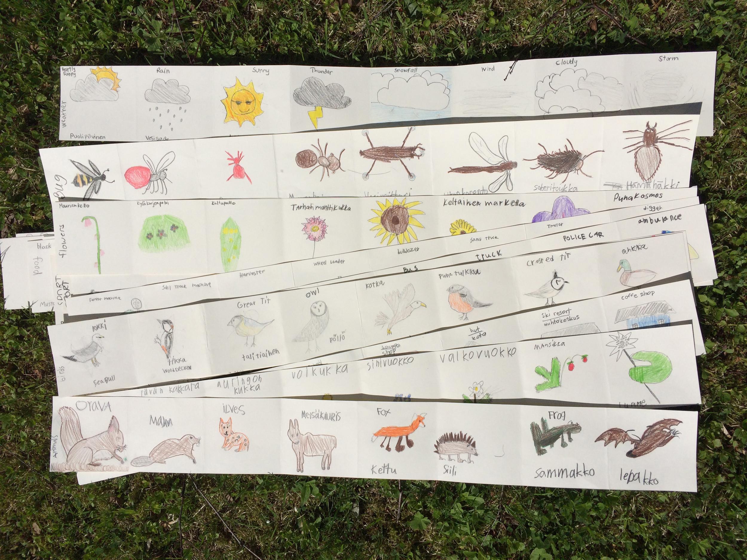 n.koulu.research. species.jpg