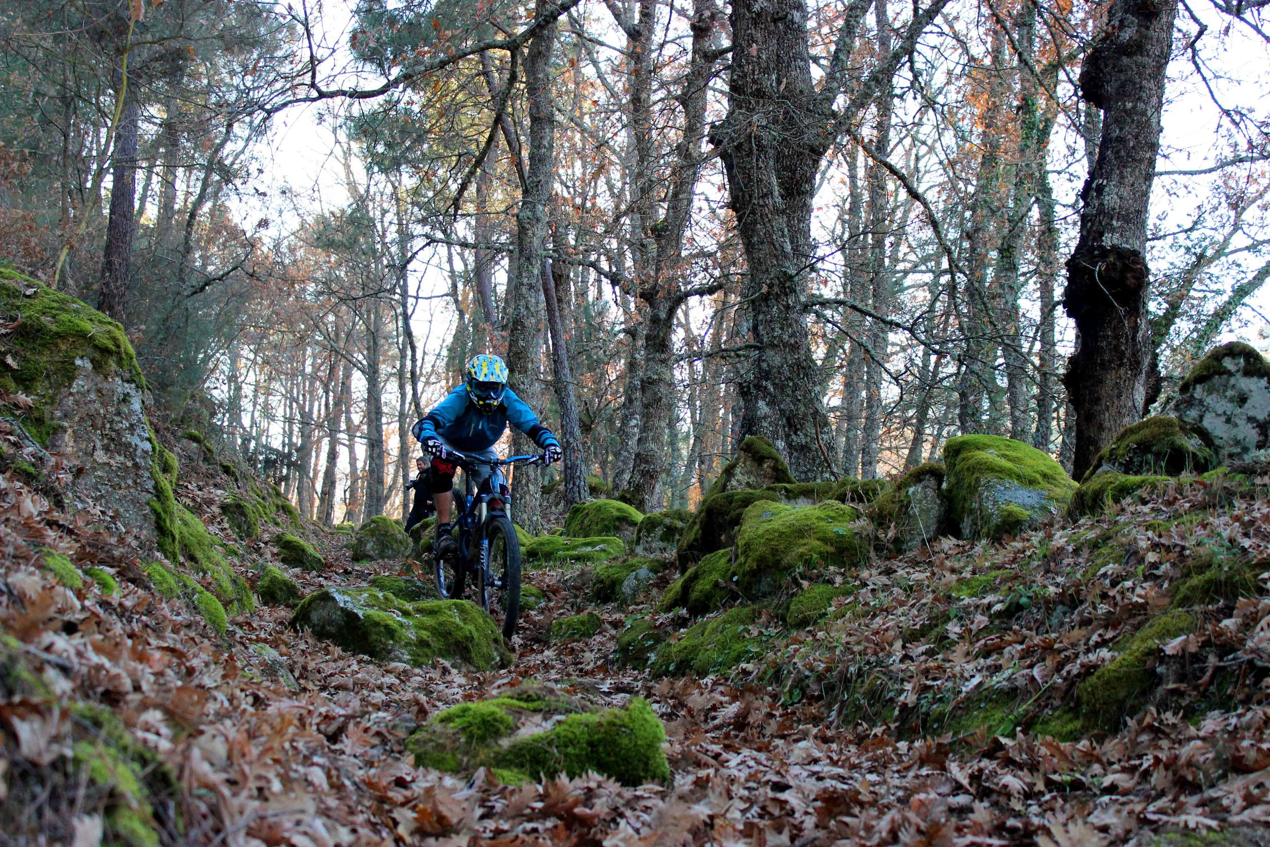 perfect trails in the North, Guarda