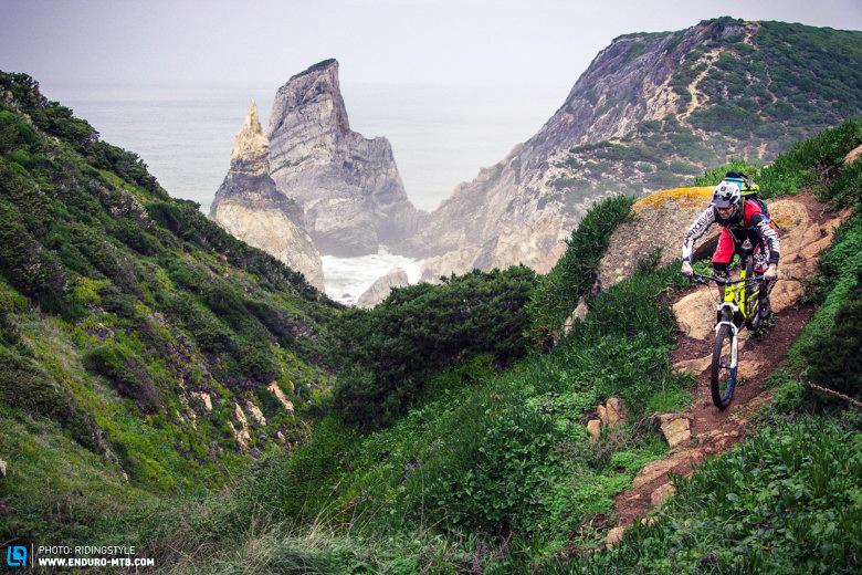 weride shoreline ridingstyle