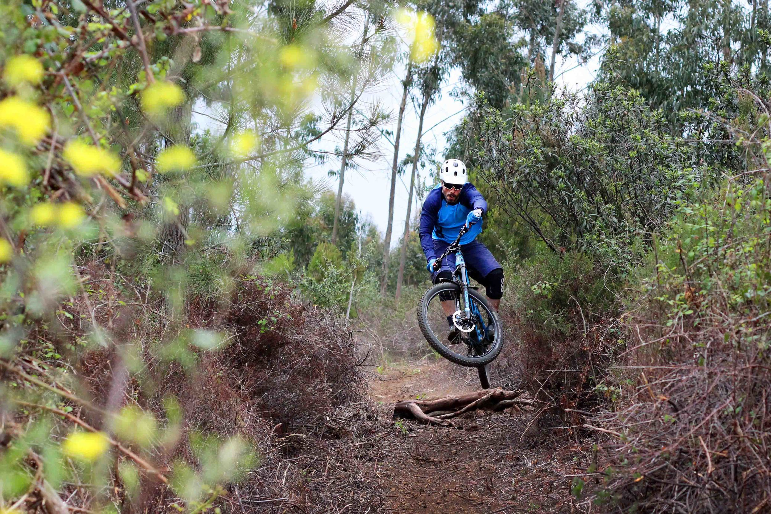 Cutting trails in Marmelete