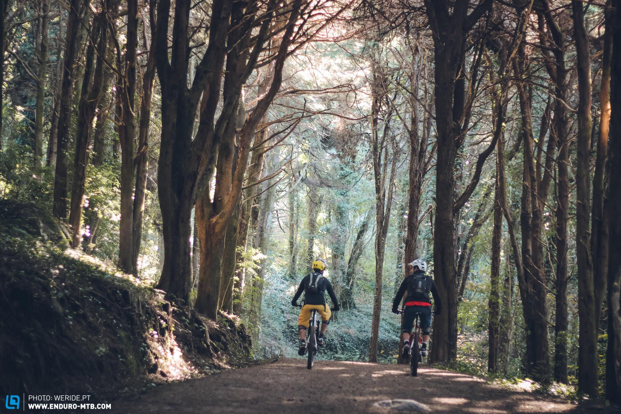 Travel-Story-Portugal-Sintra-2.jpg